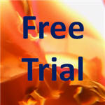 Fire Marshal Online Free Trial